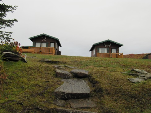 Cabins and the path down to the lake.