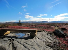 We have several little benches where guest can sit and soak in the view.