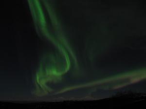 Aurora Borea