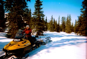 Getting wood, nothing like a little logging with a snow machine!